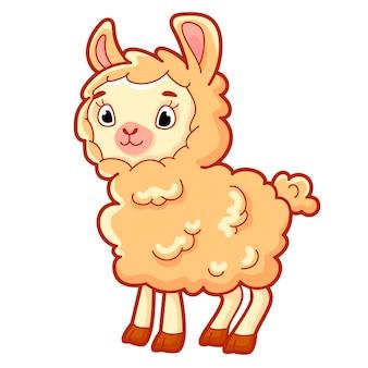 Cute sheep cartoon. sheep clipart vector illustration