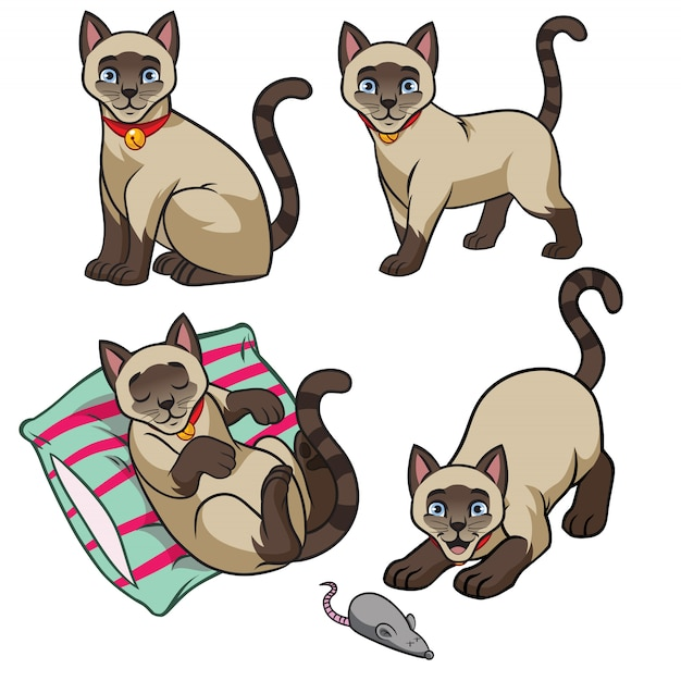 かわいいシャム猫セット