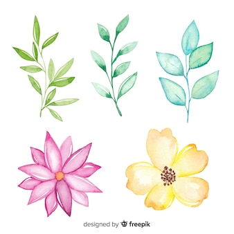 Cute simplistic drawings of colourful flowers