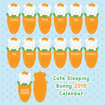 Cute sleeping bunny 2019 calendar