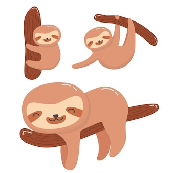 Cute sloth collection set
