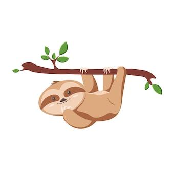 귀여운 나무 늘보, 재미있는 그림 인쇄, 포스터. 텍스트 속도를 줄입니다. 트리 분기 야생 동물입니다.