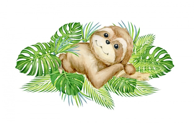 Cute sloth, lying on a tree, surrounded by tropical leaves. watercolor concept.