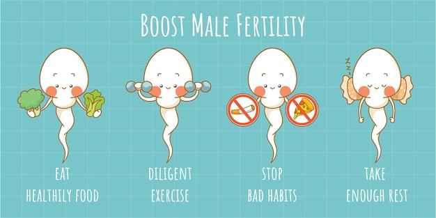 남성 생식력을 높이는 팁이 있는 귀여운 정자 세포