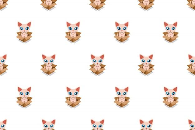 Cute sphynx cat in cardboard box seamless pattern