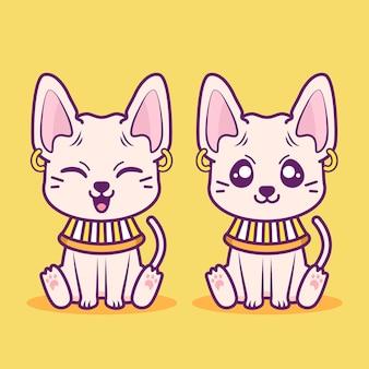 다른 표정으로 귀여운 스핑크스 고양이