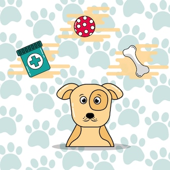 Cute spotted dog pet toy bone and medicine