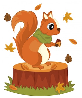 Cute squirrel with acorns stump foliage hello autumn vector illustration. squirrel cartoon autumn greeting card.