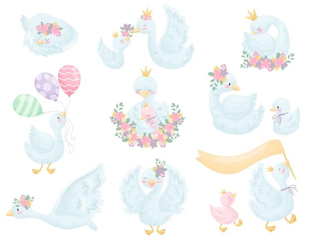 Милые лебеди с короной и цветами. иллюстрация на белом фоне.