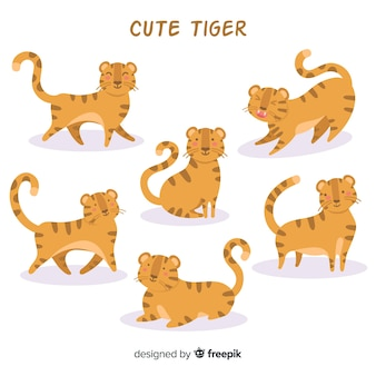 Collezione tigre carina