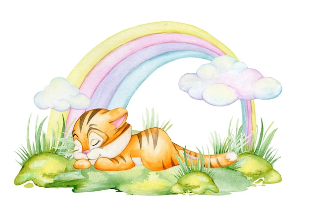 Cute tiger cub, sleeping on the grass, against the background of a rainbow. a watercolor concept on an isolated background.