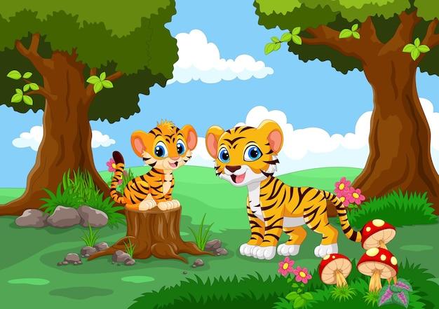 Милые тигры в лесу