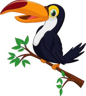 Смазливая птица мультфильма