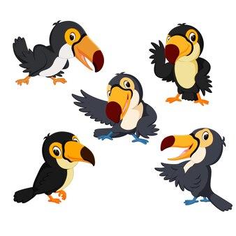 Cute toucan cartoon collection set