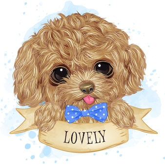 Cute toy poodle watercolor