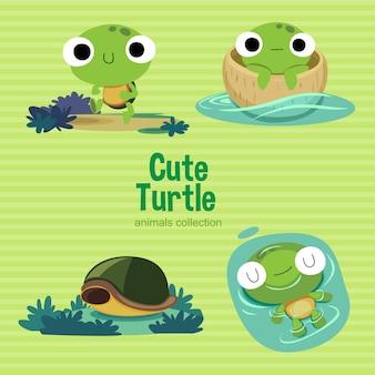 귀여운 거북이
