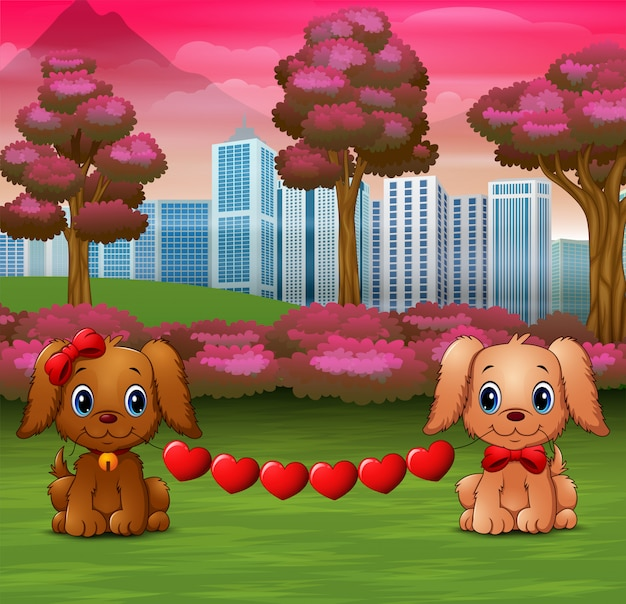 Cute two dogs bite heart in the park