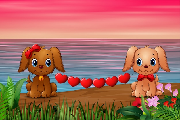 Cute two dogs bite heart on the seaside