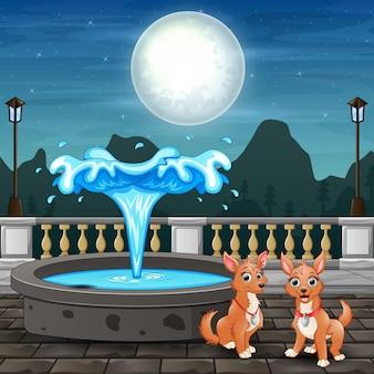 噴水の近くに座っているかわいい2匹の犬