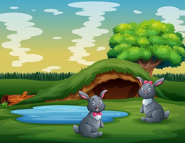 緑の土地で遊ぶかわいい2匹のウサギ