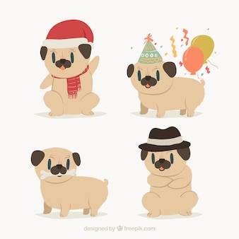 Cute variety of funny pugs