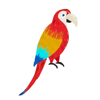 Cute vector hand drawn sketch of bright colorful ara macaw illustration of wild tropical parrot bir