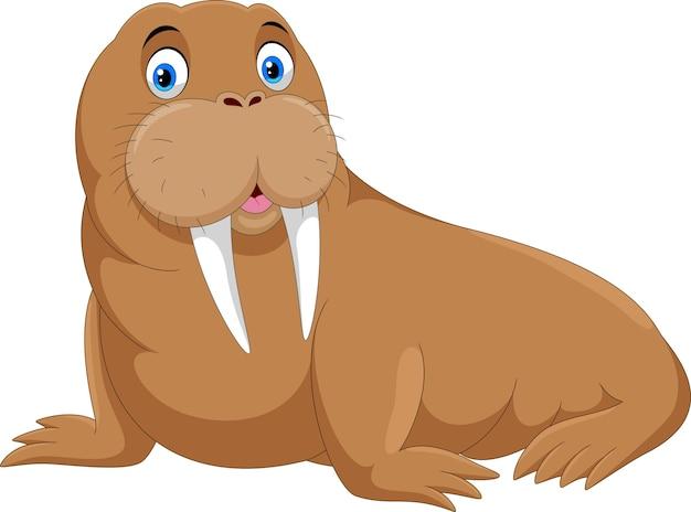 Милый мультфильм моржа