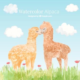 Cute watercolor alpaca background