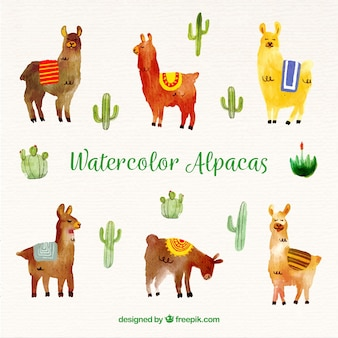 Cute watercolor alpaca background