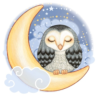 Cute watercolor barn owl sleeping on the moon in a starry night