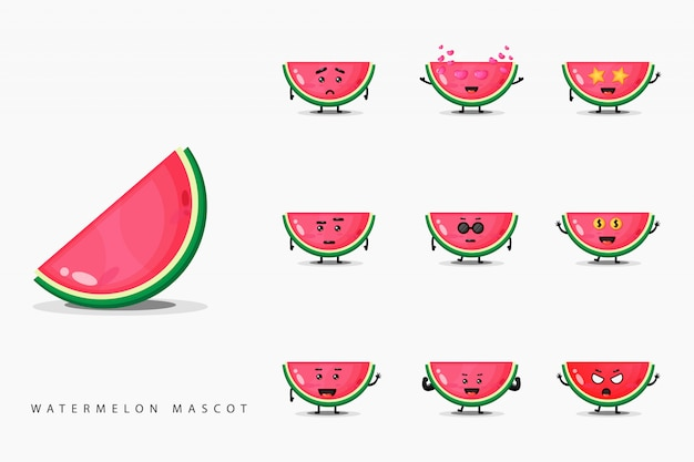 Cute watermelon mascot set