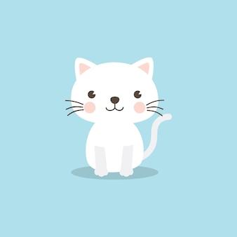 A cute white kitten on sky blue background