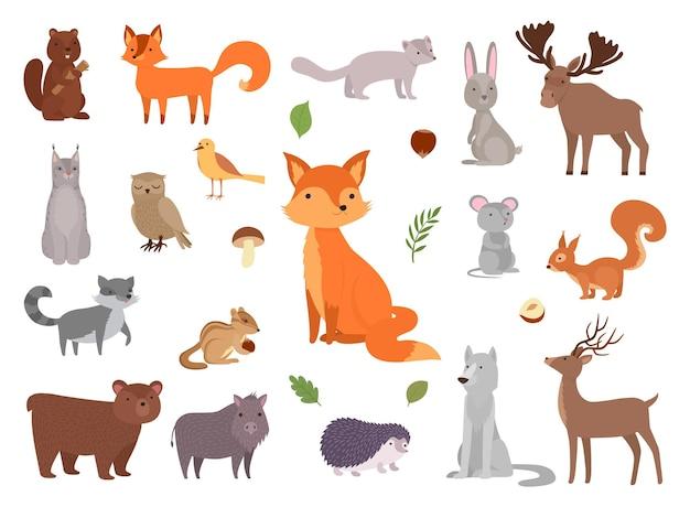 귀여운 야생 동물. 벡터 숲 동물 컬렉션 여우 곰 올빼미 벡터 그림 세트입니다. 그림 숲 곰과 토끼, 수집 야생 동물 다람쥐와 고슴도치