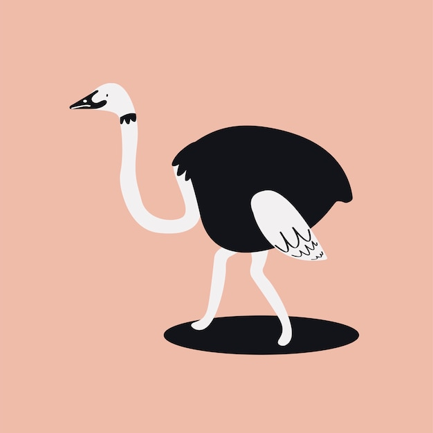Cute wild common ostrich cartoon illustration