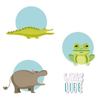 Cute wildlife animals cartoon round icons