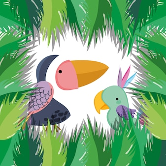 Cute wildlife birds in forest tucans cartoons