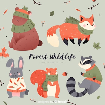 Cute winter animal collection