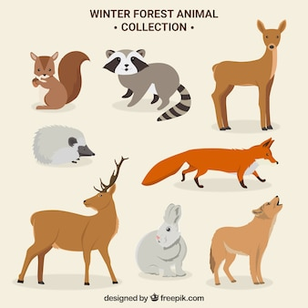 Cute winter forest animals set