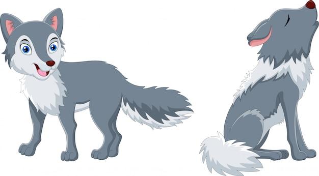 귀여운 늑대 만화와 늑대 하울링 프리미엄 벡터