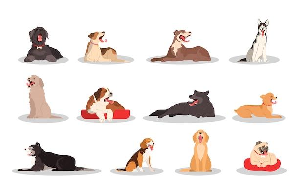 Симпатичная зевая собака набор. коллекция чистокровных собак различных пород сидя или лежа. забавный домашний питомец хочет спать. группа животных.