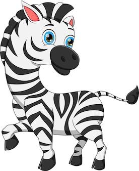 Милый мультфильм зебры на белом фоне