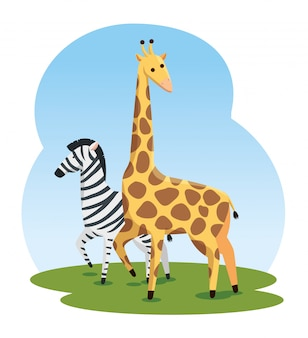 Cute zebra and giraffe wild animals