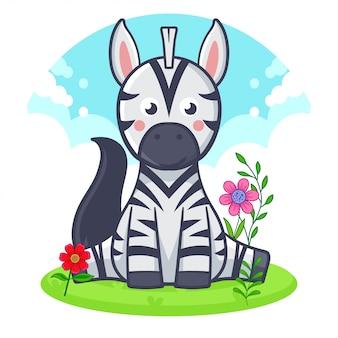 Cute zebra is sitting on a flower meadow.