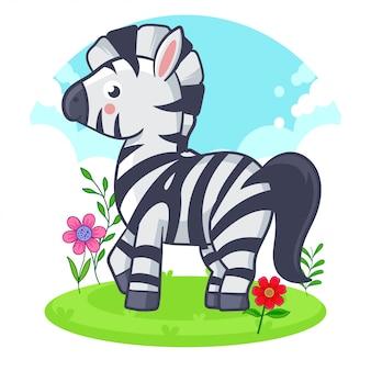 Милая зебра стоя на луге цветка.