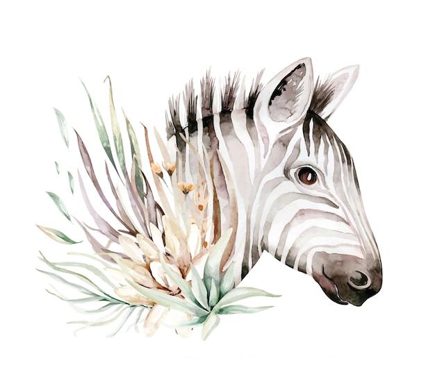 Cute zebra watercolor portrait illustration. african animals exotic nature. savannah wildlife animal