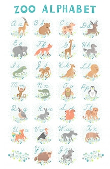 Cute zoo alphabet. funny cartoon animals. letters. learn to read and write.