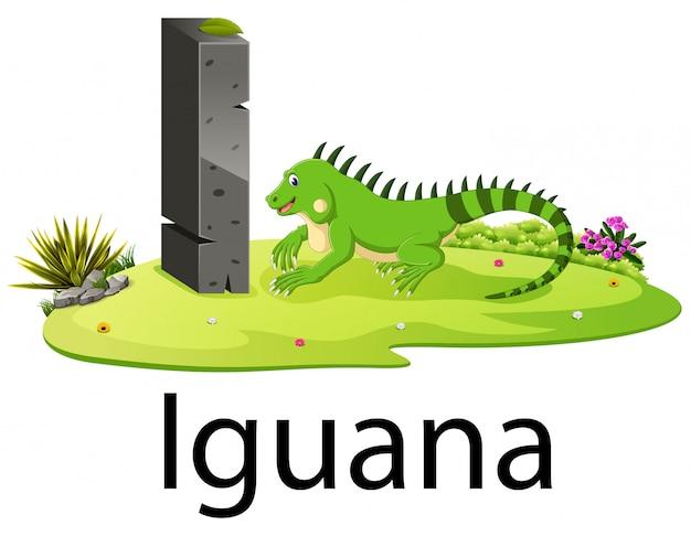 Cute zoo animal alphabet i for iguana with real animal
