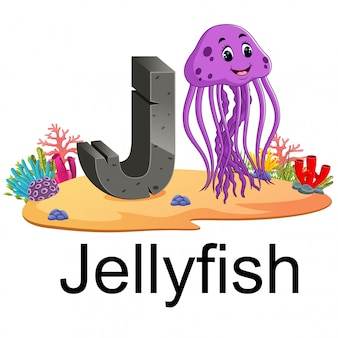 Cute zoo animal alphabet j for jelly fish with real animal