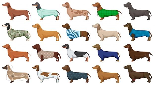 Такса мультфильм установить значок. иллюстрация собака на белом фоне. мультфильм установить значок такса.