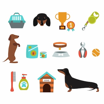 Dachshund dog playing infographic vector presentation symbols set.